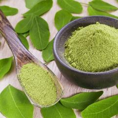 High Quality Moringa Podwer