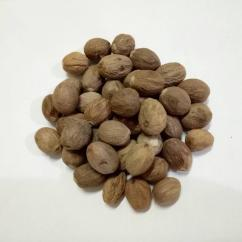 High Quality Indonesian Nutmeg
